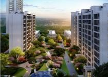 刚需小户型+品质保障 购房者置业杭州湾好选择!