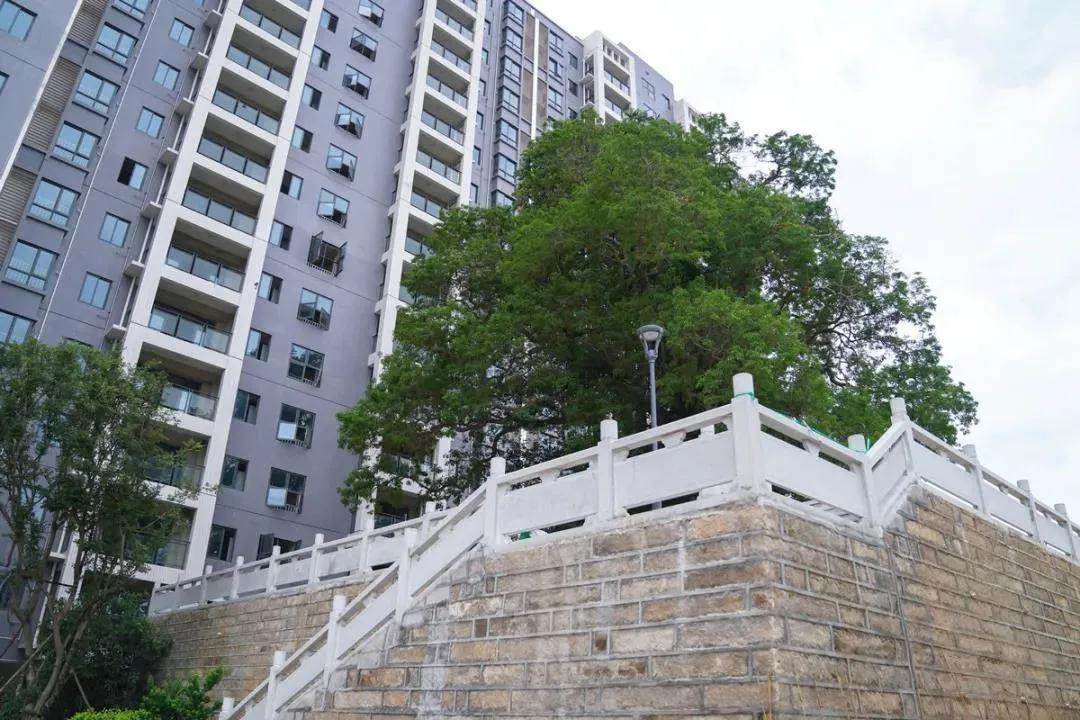漳州3万多套安置房会给楼市格局带来很大的冲击吗?