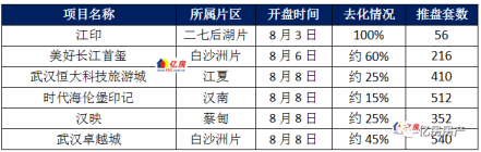 武汉2021年8月第1周6盘加推1盘日光 另8月第2周预计8盘入市