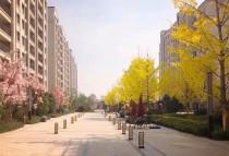 中海十里丹堤洋房户型有哪些?中海十里丹堤洋房适合刚需买吗?