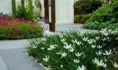 美的盛堂|花境中的禅韵东方