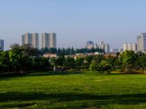 前三季度土地收益反超北京广州 武汉市场发生了什么