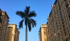 天津提出21条措施,减免租金帮助企业渡过疫情难关
