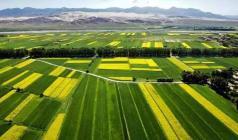 京津沪等地成为首批土地制度改革试点