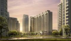 天津一项政策被废止,内容与房屋征收有关