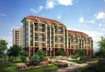 中国城镇住房自有率达96%,户均资产超300万