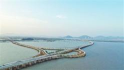 鹤洲南互通工程桥下结构开始验收