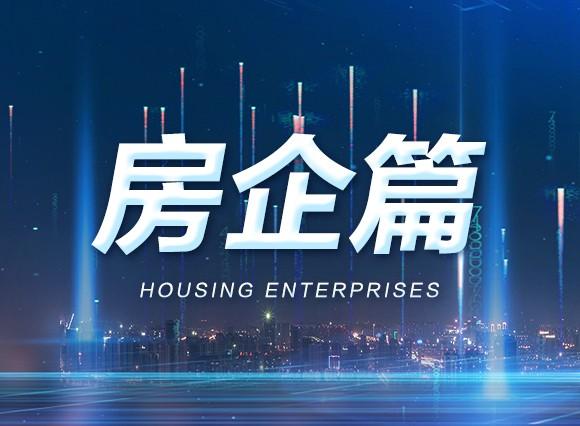 2020年半年报·房企篇:4大新咖强势进驻,贵港蓄势崛起!!
