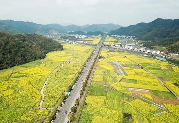 全国农村集体土地总面积65.5亿亩 账面资产6.5亿元