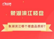 【樓盤網早報2020.8.8】象湖濱江哪個樓盤品質好?小編為您盤點