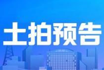 3095元/㎡!松山湖3.9万平商住地3亿起拍!