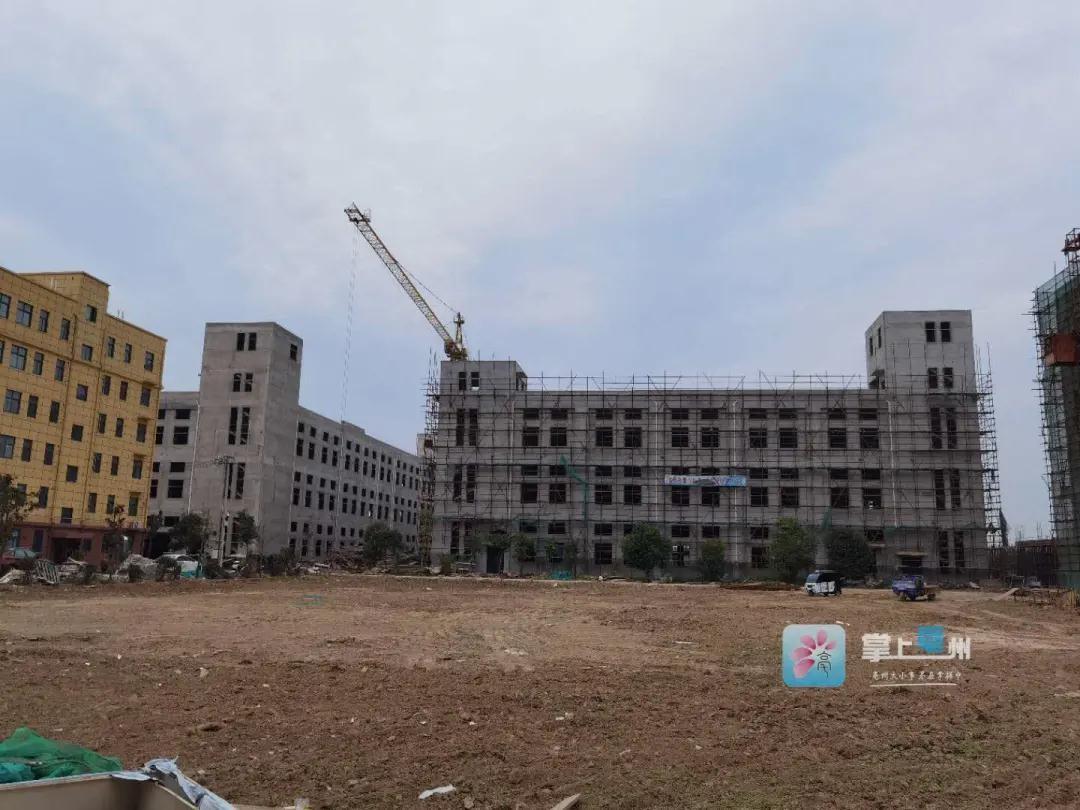 预计投产后年产值三亿元!又一中药生产项目落户谯城