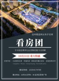 10月31日沧州楼盘网联合快手官网免费看房团即将盛大举办