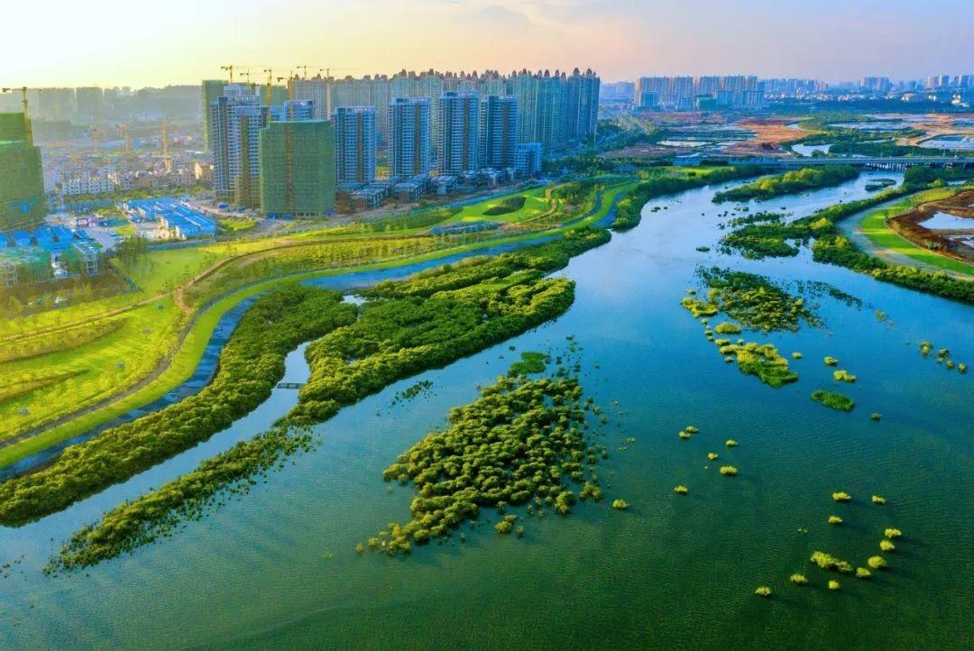 冯家江滨海国家湿地公园正式开园,北海又新添了一张亮丽城市名片