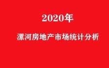 2020年漯河房地产市场统计分析