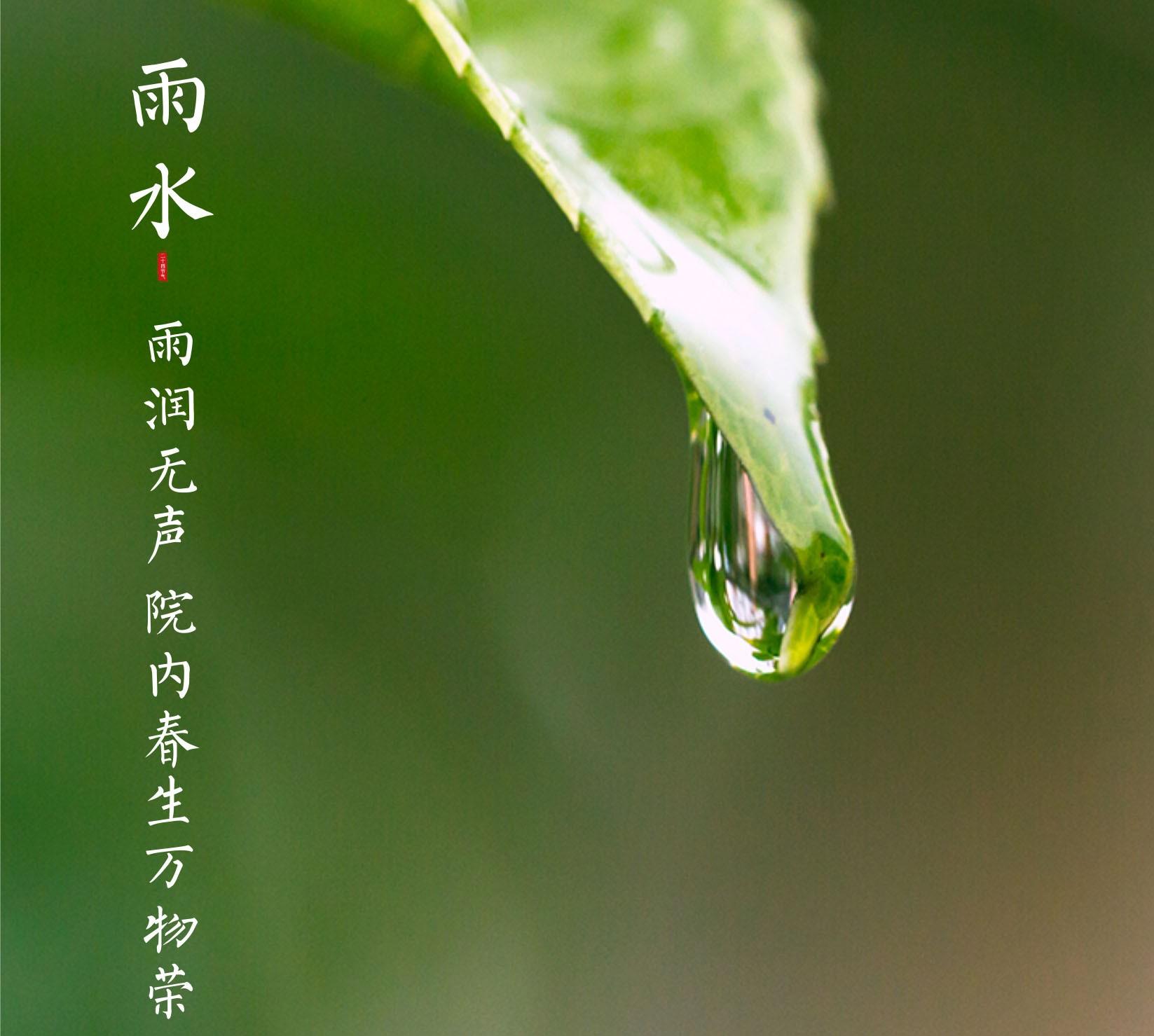 蓝城·桂林桃李春风丨雨润无声迎新春 院内萌生万物荣