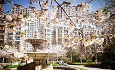潍坊大有世家 花动公馆春色 嫩蕊商量细细开,一簇深红映浅红