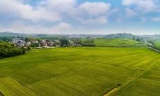 慈溪多地启动土地征收 涉及面积约12.46公顷