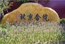 北京城建·北京合院项目主推288-370㎡合院别墅!