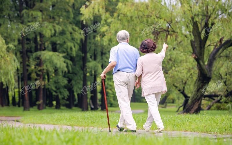 老年住宅:院子的必要性