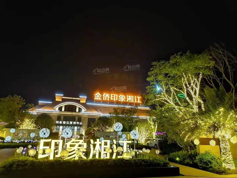 金侨·印象湘江实景图