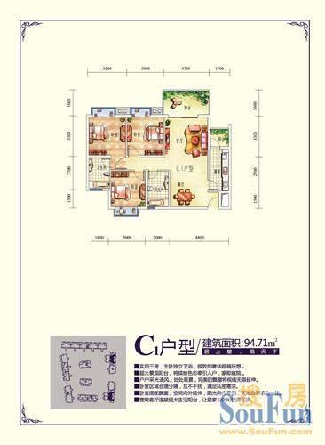 台北1号C1型