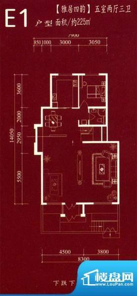 银大荷兰印象E1户型面积:225.00m平米