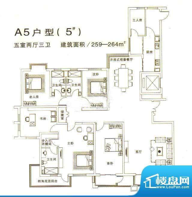 鑫域国际A5户型 5室面积:259.00m平米