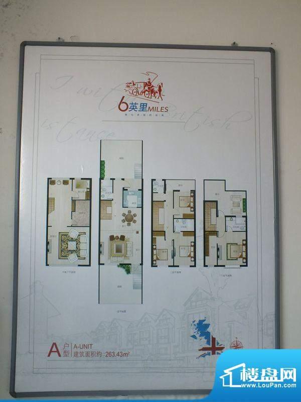 6英里A户型 5室3厅4面积:263.43m平米