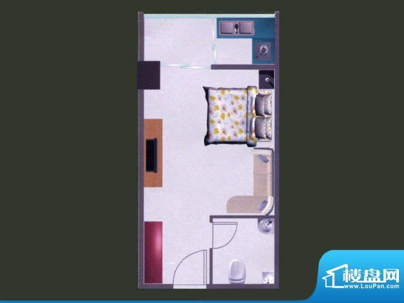 苹果公寓B户型 1室1面积:44.53m平米