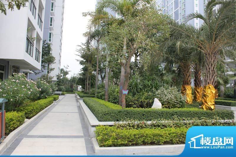 怡康春城小区园林景观实景20120228