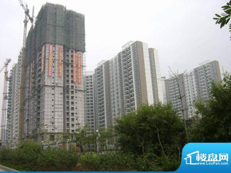 东峰广场楼盘施工全景20101222