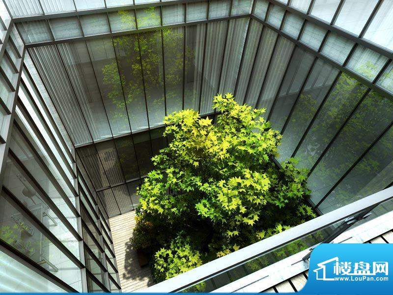 长安运河实景图