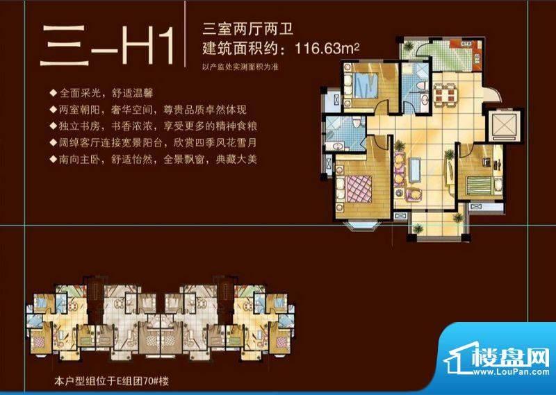 苏商御景湾D/E组团三-H1户型图面积:116.63平米