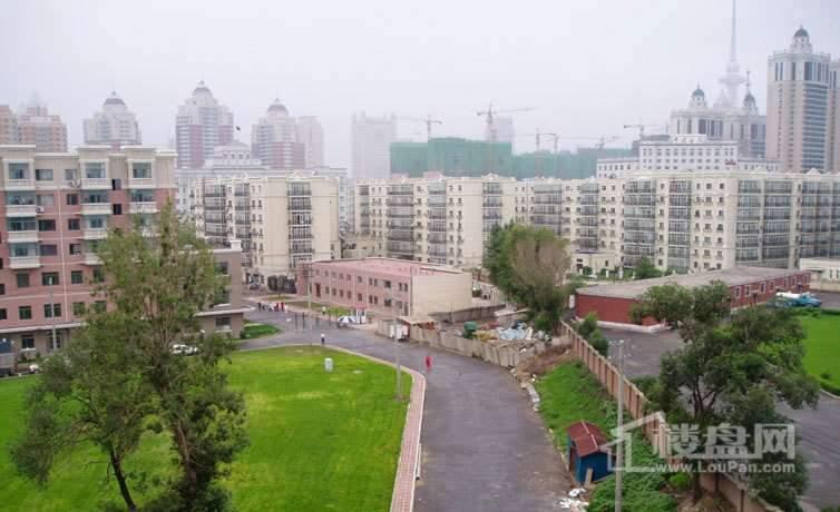 黄河绿园小区经适房效果图