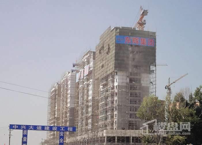 东辉明珠园实景图