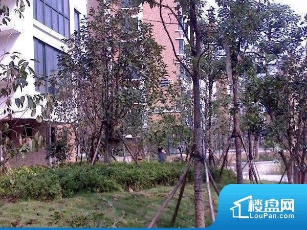 雅戈尔锦绣东城