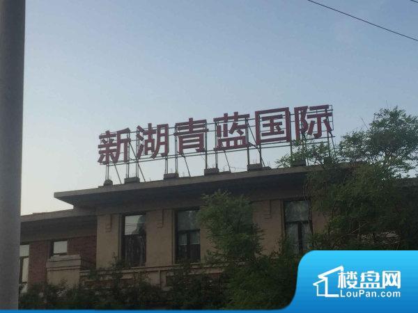 新湖青蓝国际