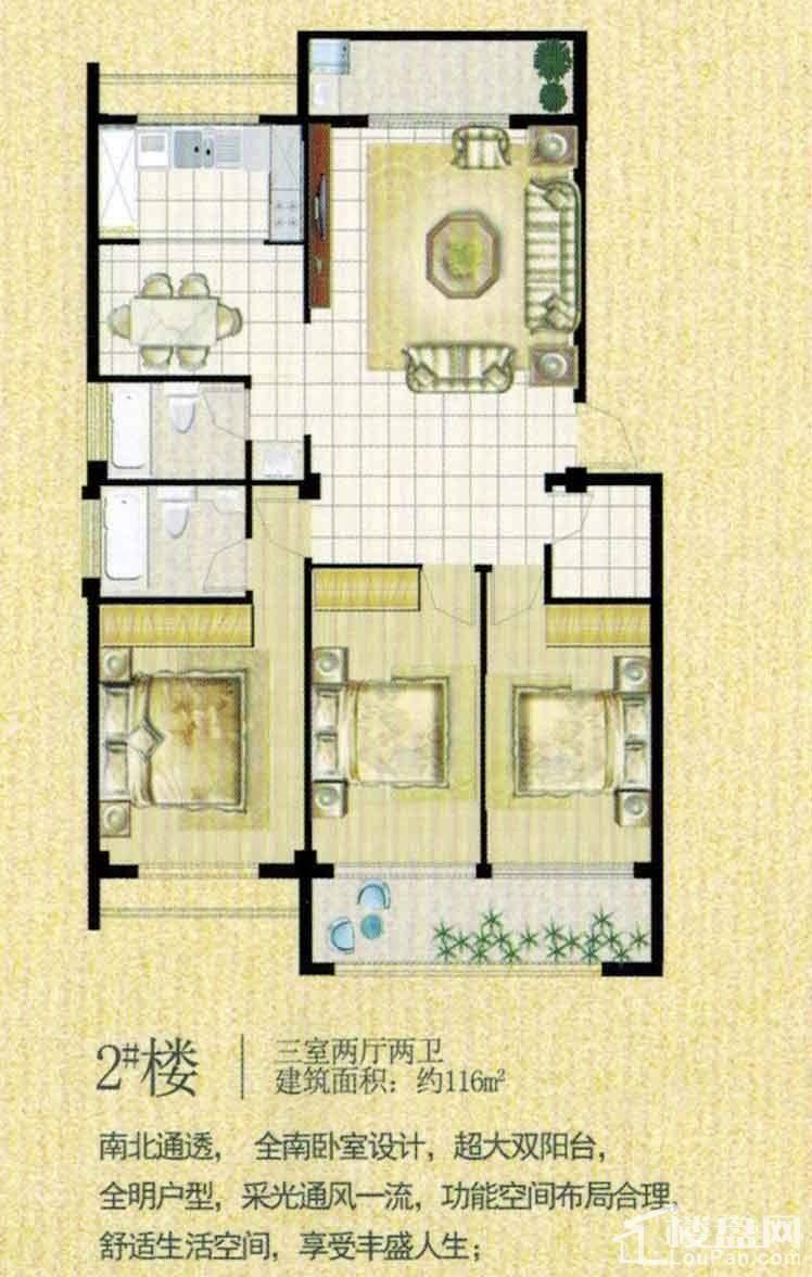 2#楼户型图