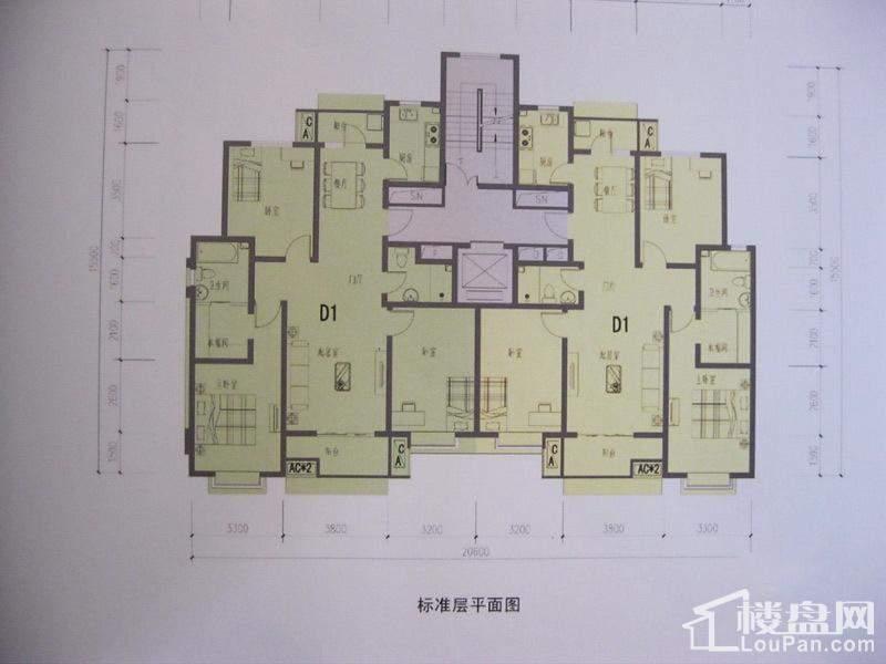 D1户型(二期)