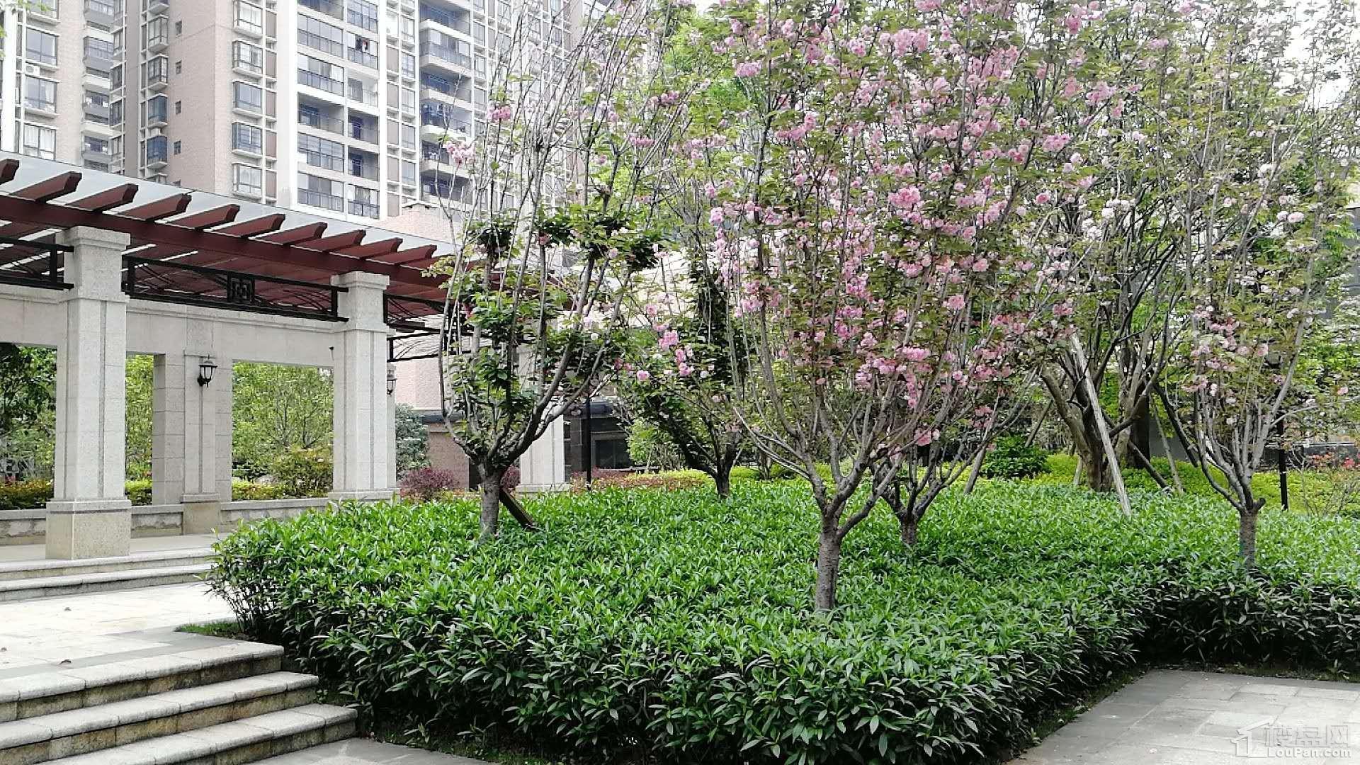 耀辉·美好家园实景图