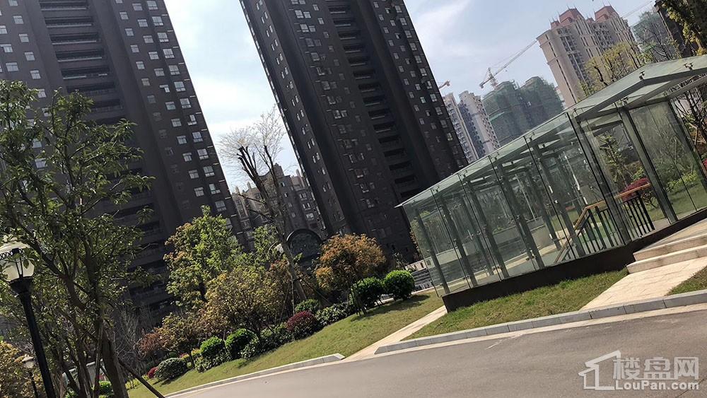 巨仁广场实景图