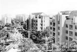 天津人才落户政策出台致房地产火爆 一天签约25套