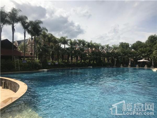 世纪阳光II棕榈湾实景图