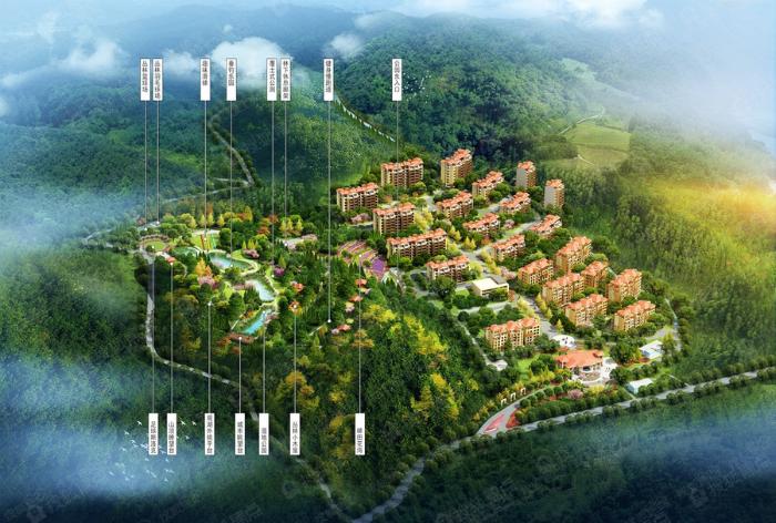 重庆金洲国际高清图