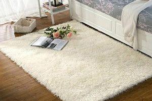 如何清洁地毯上的毛发